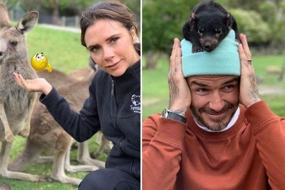 TIN BÊN LỀ 2/11: Gia đình Victoria Beckham đã vui trở lại