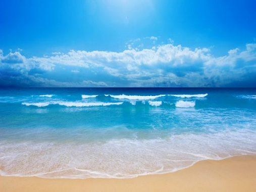 Mơ thấy biển đánh xổ số con nào là may mắn