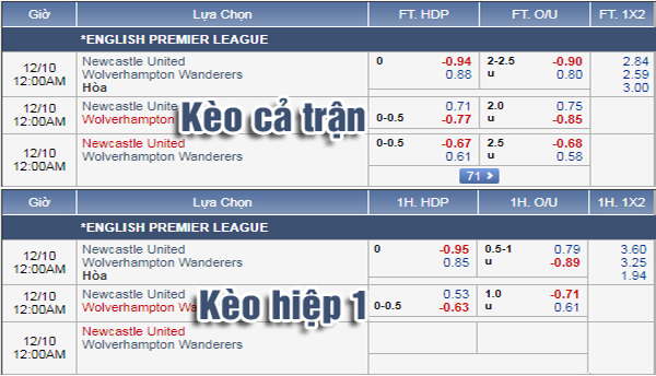 Nhận định Newcastle vs Wolves: Tỷ lệ kèo