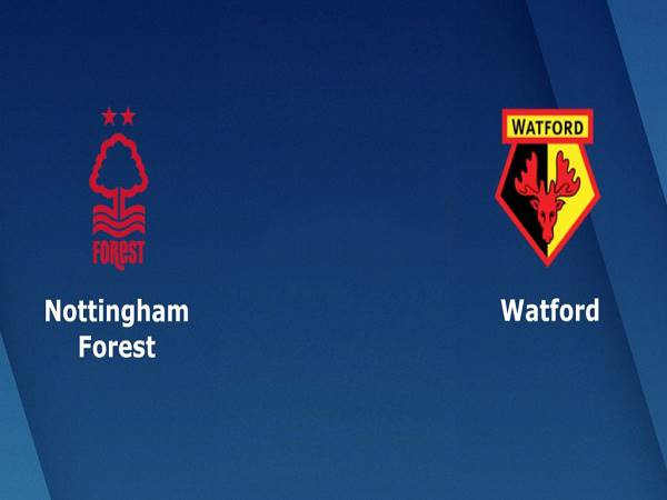 Nhận định kèo Nottingham vs Watford – 02h45 03/12, Championship