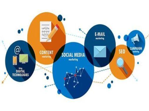 Trong seo cần có content và social media